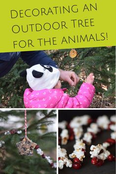 A great winter activity for the kids this holiday season! How to decorate an outdoor edible holiday tree for the animals