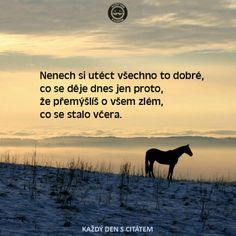 Co se nedá zapomenout celá minulost. Motivational Quotes, Inspirational Quotes, Story Quotes, Interesting Quotes, English Quotes, Powerful Words, True Words, Motto, True Stories