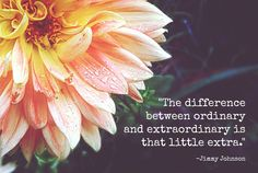 """""""The difference between ordinary and extraordinary is that little extra."""" - Jimmy Johnson"""
