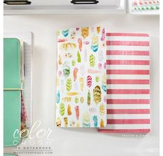 Lot de 2 carnets 'Webster's Pages - Color Crush' Travelers Notebook Plumes/Rayures