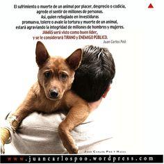 JuanCarlosPooyHachi-Ag2012 baja  http://juancarlospoo.wordpress.com/2014/11/11/excalibur-el-martir-del-ebola/