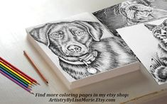 How would you color in this adorable Labrador? Hand drawn in classic grayscale, this coloring page is the perfect way to relax, stay creative and even hone your artistic skill! See more printable coloring pages @ ArtistryByLisaMarie.Etsy.com