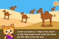 Camels - ships of the desert - Cikgu.tv e-learning for kids #education