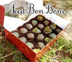 Instructables.com | SeedBonBons