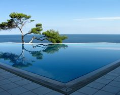 Find Beautiful Views Pool On Beach Pine stock images in HD and millions of other royalty-free stock photos, illustrations and vectors in the Shutterstock collection. Inground Pool Designs, Swimming Pool Designs, Swimming Pools, Infinity Pools, Ipad Air Wallpaper, Photo Wallpaper, Wallpaper Desktop, Wallpaper Maker, Black Wallpaper