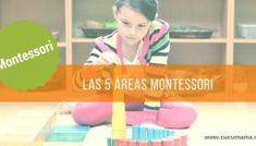 Las 5 áreas del método Montessori.