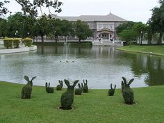 king of Thailand has a summer house where the bushes are topiaries shaped into rabbits