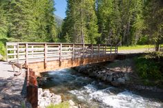 The Pacific Northwest Trail crosses Grave Creek on the Kootenai National Forest
