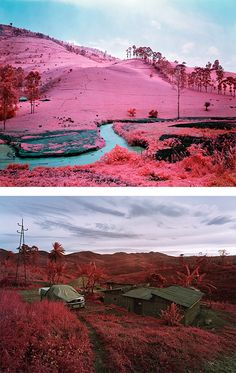 """""""Infra"""" by Irish photographer Richard Mosse. The aerochrome series of images are created using discontinued military surveillance technology, a type of color infrared film called Kodak Aerochrome."""