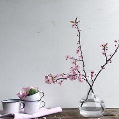 4,044 отметок «Нравится», 115 комментариев — Dorian Bowen UK (@thewelshhouse) в Instagram: «Blossom symbolise the arrival of Spring, beauty, the fragility of life, the honour of a lost love…»