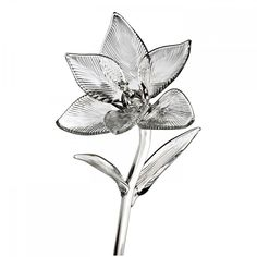 """Waterford Crystal Fleurology 6"""" Lily Flower New In Black Waterford Gift Box #Waterford"""