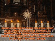 Divino Corazón de Jesús, Corazón lleno de celo por la gloria de tu Padre, te rogamos por todos los sacerdotes, Señor. Por tu Espíritu Santo llénalos de fe, de celo y de amor. Así sea.