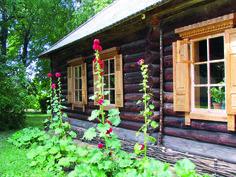 Jak pielęgnować drewno. Jak konserwować drewniany dom. Konserwacja drewnianych ścian. Jakie drewno na stropy. Jak szpachlować drewno. Jak dbać o drewno.