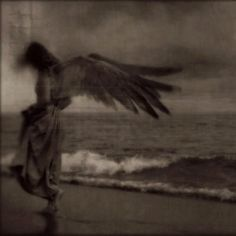 .. angel ..