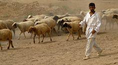 Iraq, Iraq people