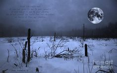 Native American Full Moon Treat The Earth Well Photograph