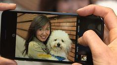 Gosta de tirar fotos mas não tem câmera profissional? Usuários da Apple já podem tirar fotografias dignas de uma máquina usando apenas o seu iPhone. Gosta de tirar fotos mas não tem câmera profissional? Usuários da Apple já podem tirar fotografias dignas de uma máquina usando apenas o seu iPhone. A companhia divulgou recentemente alguns vídeos com dicas fáceis e incríveis para fotografar com o aparelho mas algumas funcionalidades estão disponíveis apenas para iPhone 7 Plus olha só:  Leia…