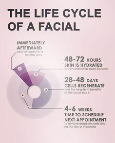 Amamos está explicación que encontramos en Pinterest, sobre el Ciclo de vida de un Facial: *Inmediatamente después piel radiante y con brillo natural. *Entre 48 y 72 horas después tu piel está Hidratada. *De 28 a 48 días se lleva a cabo el proceso de regeneración celular. *Entre 4 y 6 semanas después es tiempo de Agendar una cita para tu próximo Facial. Bravisimo! #facial #esthetician #timetorelax #hydrate #beauty #beautyskin #healthyskin #perfectskin #foreveryoung #spatime #spa #hydratante…