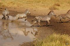 Unterwegs im Rift Valley