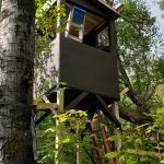 5x5 Deer Blind Plans | HowToSpecialist - How to Build, Step by Step DIY Plans Deer Shooting, Shooting House, Deer Hunting Tips, Deer Hunting Blinds, Woodworking Projects Diy, Diy Projects, Furniture Projects, Diy Furniture, Hunting Stands