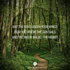 May the wind under your wings bear you where the sun sails and the moon walks -The Hobbit ~Loved this quote when I read this book!