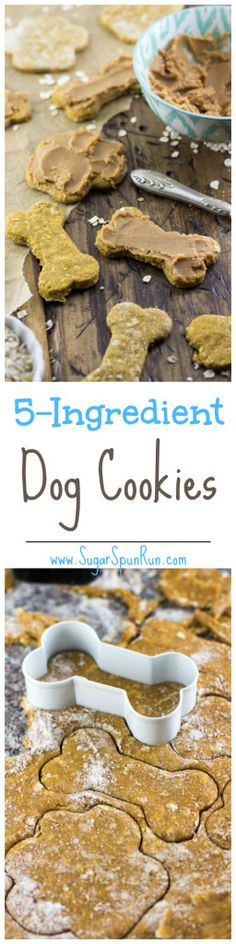 Make your own dog cookies with this easy, 5-ingredient recipe!    SugarSpunRun.com