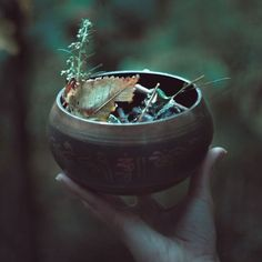 Image in wicca collection by on We Heart It Mabon, Samhain, Beltane, Maleficarum, Yennefer Of Vengerberg, Autumnal Equinox, Witch Aesthetic, Autumn Aesthetic, Aesthetic Songs