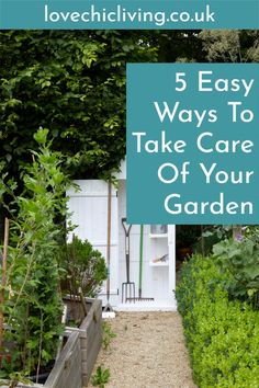 Easy ways to maintain your garden in the summer months, from watering to composting and pest control. Shovels And Spades, Contemporary Garden Rooms, Composting Process, Importance Of Water, Garden Images, Space Images, Gardening Gloves, Garden Care, Summer Months