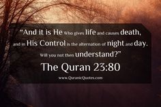 #214 The Quran 23:80 (Surah al-Mu'minun) And it is He Who gives life and causes death, and in His Control is the alternation of night and day. Will you not then understand?