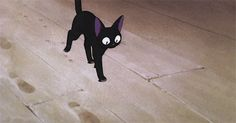 gif hayao miyazaki Kiki's Delivery Service jiji studio ghibli beyond-the-bath-house Cat Icon, Kiki's Delivery Service, Cat Character, Ghibli Movies, Animation Reference, Hayao Miyazaki, Cat Crafts, Aesthetic Anime, Manga Anime