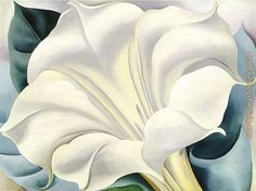 georgia o keeffe paintings white trumpet flower georgia o keeffe . Georgia O'keeffe, Alfred Stieglitz, Wisconsin, Georgia O Keeffe Paintings, Munier, Examples Of Art, New York Art, Arte Floral, American Artists