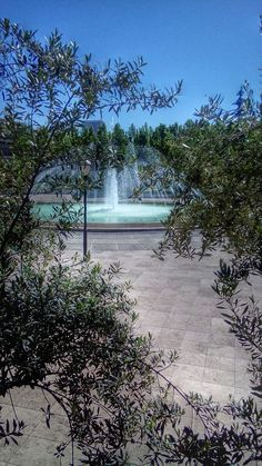 Goftegou Park In Tehran At Gisha Street