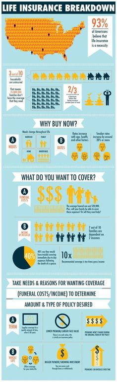 Food infographic  Food infographic  Life Insurance Breakdown