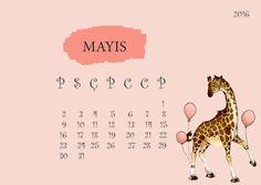 Mayıs
