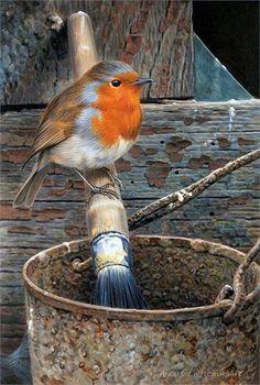 European Robin, European Garden, Robin Bird, Wow Art, Little Birds, Wildlife Art, Wild Birds, Woodland Animals, Animal Paintings