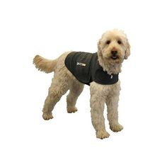 Thundershirt for Anxiety