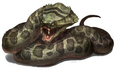 Frontier pit cobra: a viper cobra known in the northern plains of the frontier it is highly venomous with toxins strong enough to kill most frontier dragons.