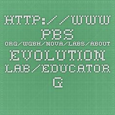 www.pbs.org/wgbh/nova/labs/about-evolution-lab/educator-guide/