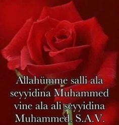 Hyder Ali, Jumah Mubarak, Assalamualaikum Image, Muhammed Sav, Deep Words, Allah, Beautiful Flowers, Quotes, Mosque