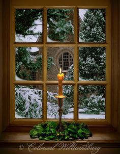 Christmas Candle In a Window Colonial Williamsburg.