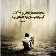 Famous Poems, Bio Quotes, Text Pictures, Text On Photo, Love Poems, Urdu Poetry, Texts, Qoutes, Feelings