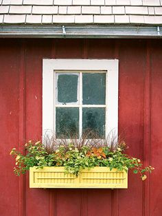 Window Box with a shutter