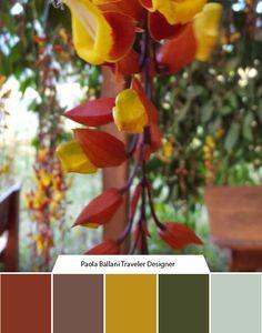 Per saperne di più… codici colore In partnership with Alessandro PavanLiela Zamboni E' stata scattata qui: