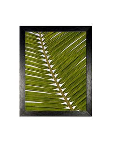 Palm Leaf Print, Tropical Art, Abstract Wall Decor, Coastal Decor, Instant Download