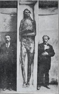 Alguém quer ter uma idéia de como eram os Anunnaki? Essa é a imagem que acredito ser de um deles:Os 18 Esqueletos Gigantes de WisconsinEm maio de 1912, Wisconsin, Estados Unidos, os irmãos Peterson...