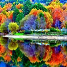 Autumn reflection!