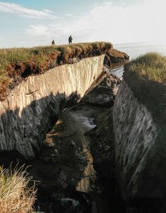 Since massive amounts of organic material is trapped in permafrost worldwide, scientists fear that as it thaws it will release all of that stored carbon in the form of greenhouse gases.
