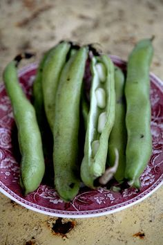 fava beans, oh how i love thee. with tomatoes, you are even better than a fresh mozzarella. if only it didn't suck to shell you, twice. Fruit And Veg, Fruits And Veggies, Traditional English Food, No Rise Bread, Fava Beans, Eat The Rainbow, High Tea, Food Pictures, Love Food