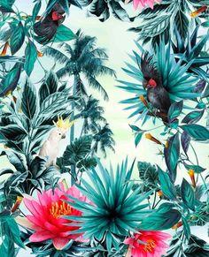 Imagen de background, wallpaper, and floral