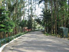 """Infraestrutura: O Museu do Meio Ambiente está localizado no Parque do Carmo, que também está munido de lagos, estacionamento, anfiteatro natural, aparelhos de ginástica (barras), campos de futebol, ciclovia, pista de cooper, planetário (em reforma), playgrounds, quiosques e cerca de 80 churrasqueiras. Gramado para piquenique, sanitários, bosque de leitura e viveiro. Funcionamento: Diariamente, das 6h...<br /><a class=""""more-link""""…"""